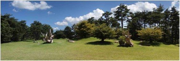 [ENKOFE] 편백나무숲과 하늘정원을 빼놓고 '힐링'을 논하지 말라!
